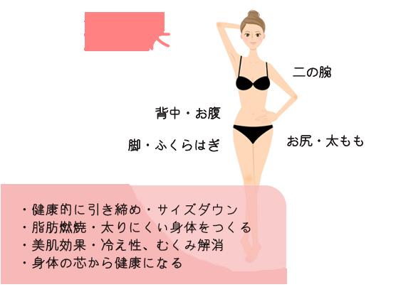 効果の解説図・脂肪燃焼・太りにくい体をつくる・美肌効果・冷え性・むくみ解消